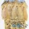 청정해풍 태양건조 오징어 20마리 1.3K